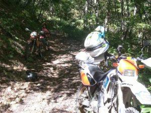 木漏れ日も林道だと路面を把握の邪魔になる。一段と路面状況隊がわからなくなる。