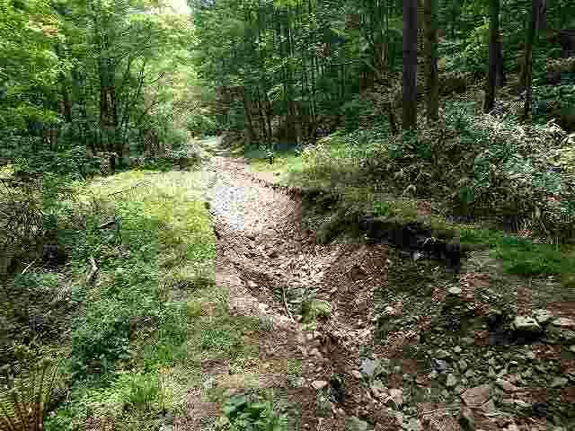 ほんの数年前まで一番走りやすかった初心者向けの林道ですらこれです。