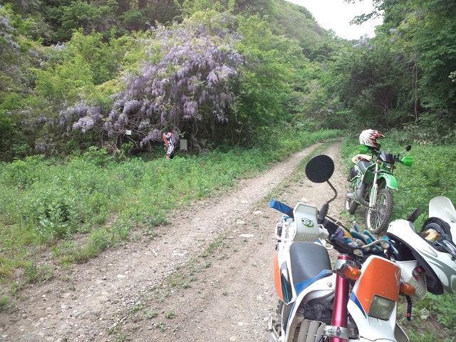 これくらい乾いた林道走るとゴーグルがじゃりじゃりします。