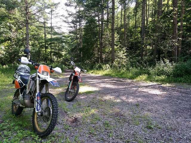林道も大体二台で行きます。