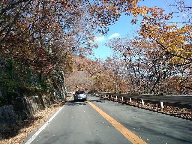 秋の高原道路を流す、とか気持ちいいです。