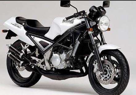高いっす、250cc。R1-Z欲しい。