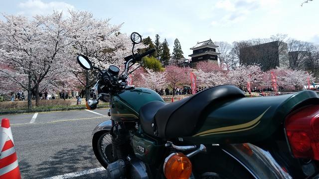 Z750D1。周囲は車で大渋滞の桜の時期の上田城址公園。