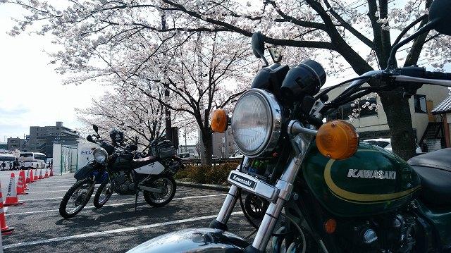 バイクの駐輪場はこれぐらい空いている(笑)