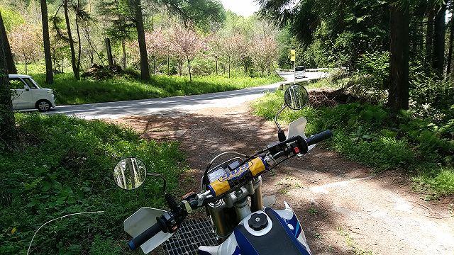 ガンガン林道走っていますが、今でも現役でございます。