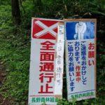 こういう林道が多いです。
