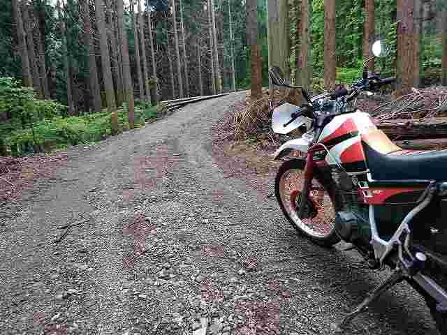 セロー225W。オフロードバイクはまじめに難しいけど楽しすぎる。