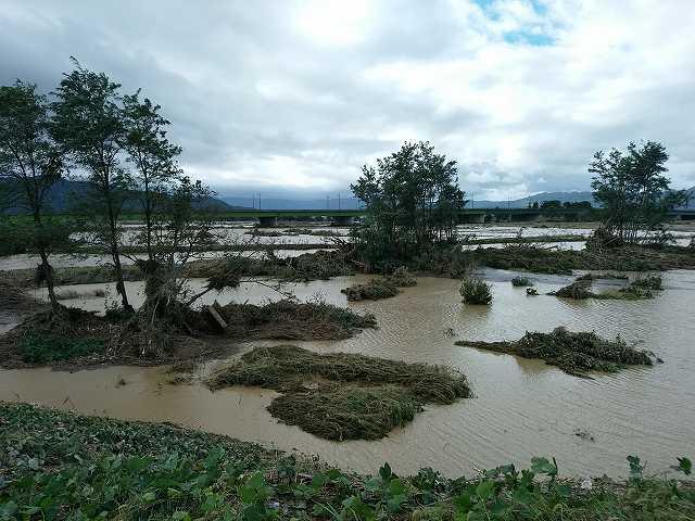 河川敷の畑やグランドはほぼ全滅