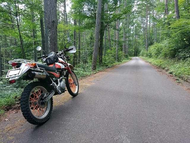 セロー225W。鷹狩山の東側はこんな感じの道が続く。