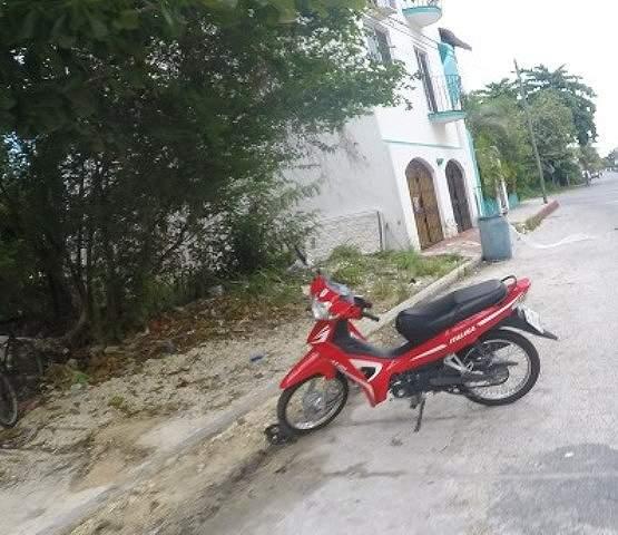 軽量バイクは人力も持ち上げられちゃうのかもしれません。
