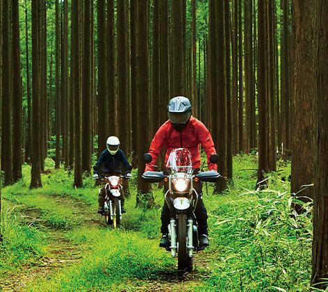 セロー250。林道ではスタンディングポジションが基本と言っても過言ではない。