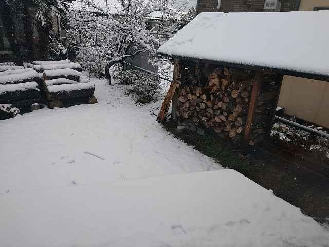 雪が積もった中、薪を取りに行くのは結構つらいのだ。