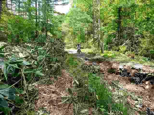 林道はこれぐらいは普通に荒れています。