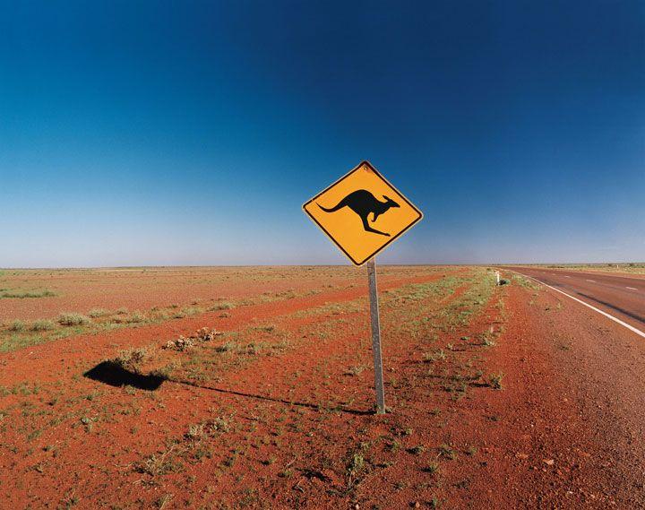 豪州の砂漠はほんとにこんなところでした。