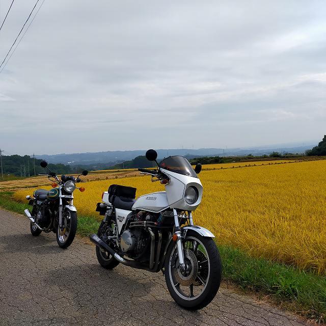 Z1-RとZ750D1。つい最近まで田んぼは青々してたのにねえ。