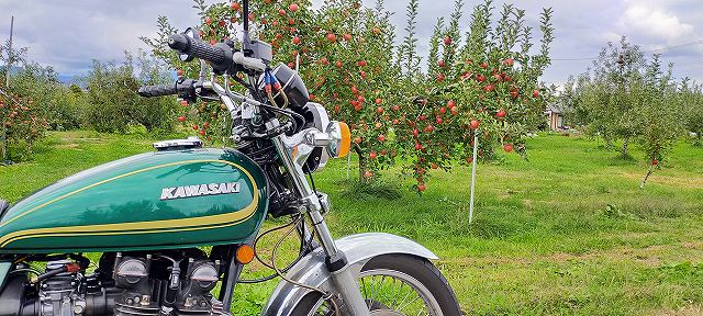 Z750D1。長野では道端にリンゴがなっている。