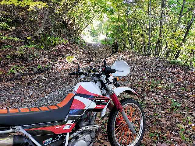セロー225W。普段ならいい林道ツアーコースなんですけどね。