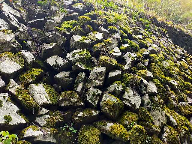 こんな荒く積んだ石積みの隙間から冷風が来る。