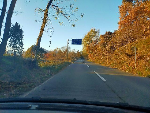 県道4沿いは秋真っ盛りでした。