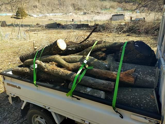 乾いていない生の薪は想像以上に重いのです。