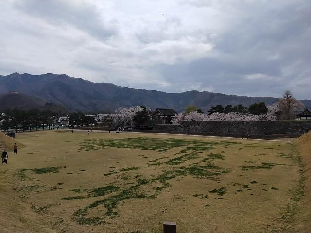 高台から見ると遠くに桜並木が。