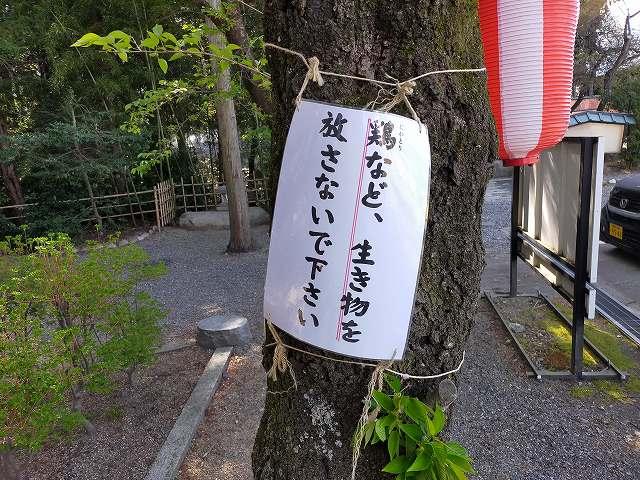 思わず二度見する穂高神社の警告。