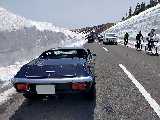 ロータスヨーロッパ。撮影している嫁に車の中から「早く乗れ!」と叫んでいるワタクシ。