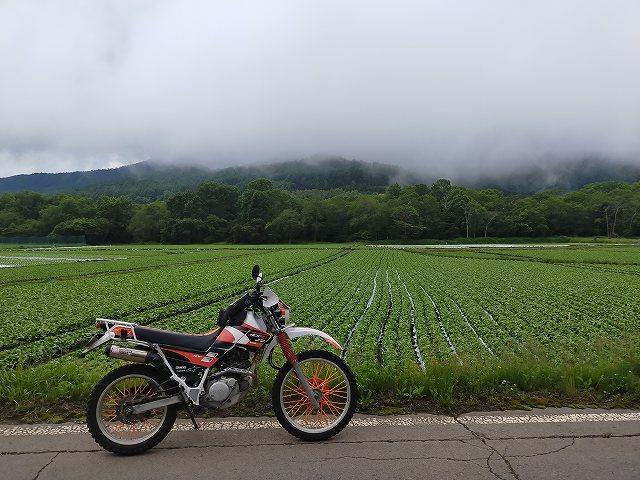 セロー225W。菅平は雲の中。さっきまで雨降ってたな。
