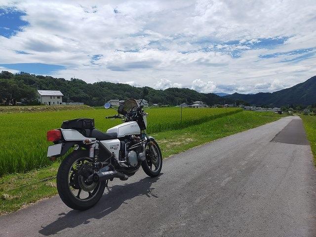 Z1-R。田んぼの真ん中の道路にて。