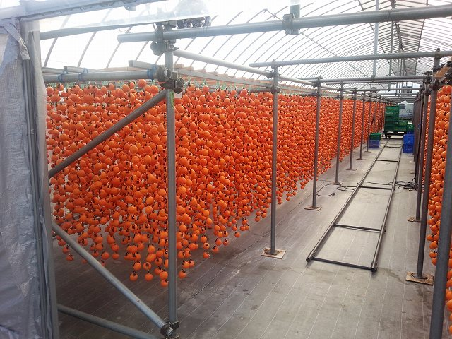 南信の飯田市外で11月に撮った干し柿の写真。