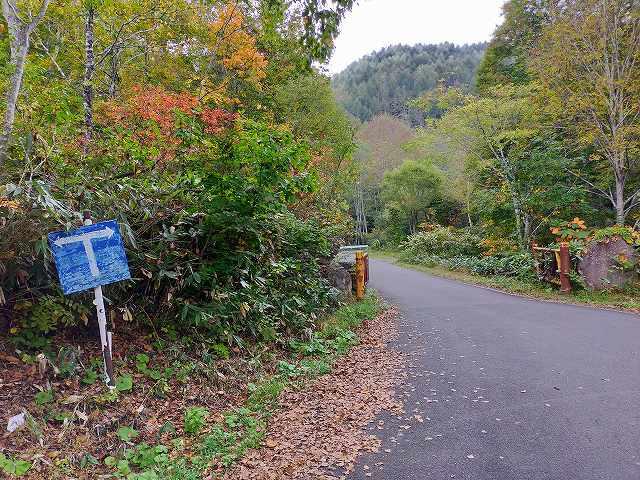 こちらが秋山郷へ続く旧雑魚川林道。